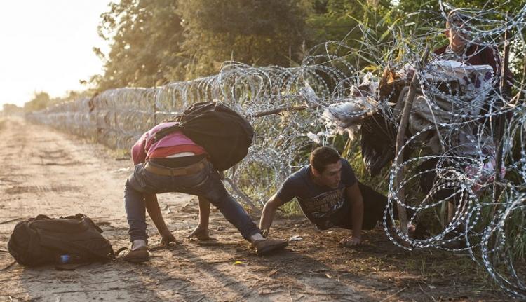 Így (nem) működik a kerítés a magyar-szerb határon